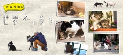 岩合光昭世界ネコ歩き