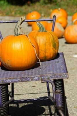 pumpkin003.jpg