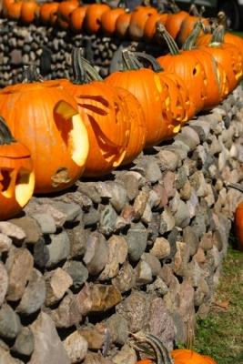 pumpkin004.jpg