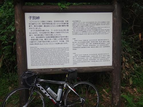 DSC06334.jpg