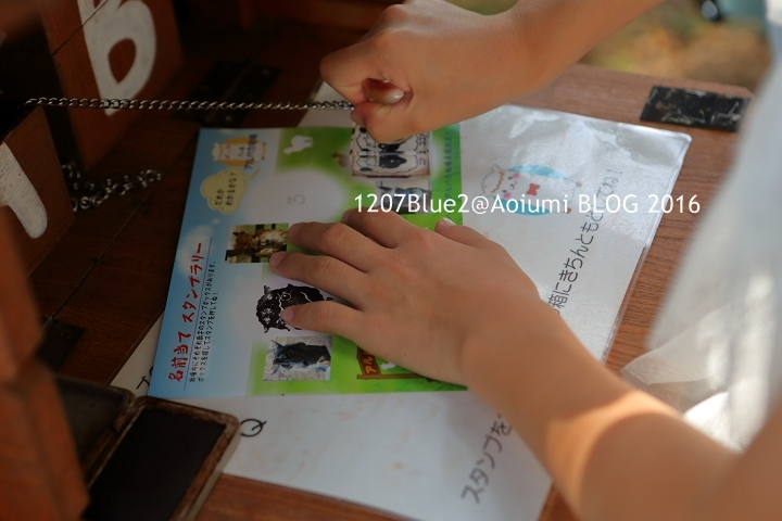 329A2432_160816_1207Blue.jpg