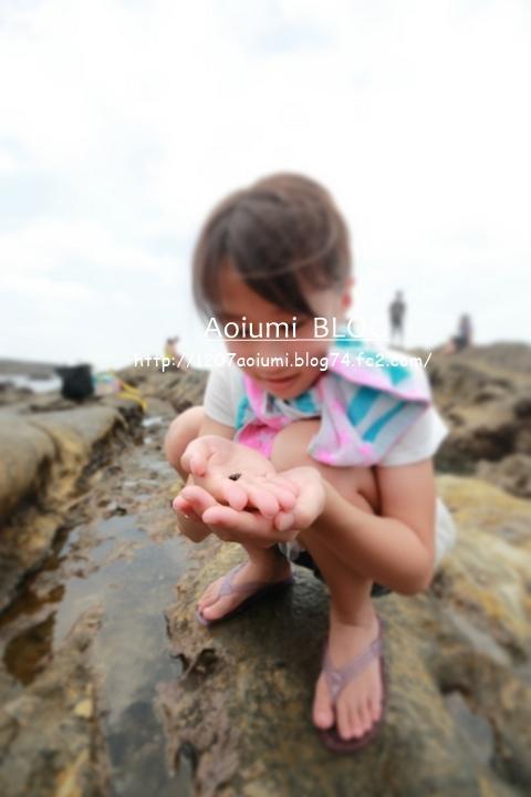 329A9766A_160716_1207Blue.jpg