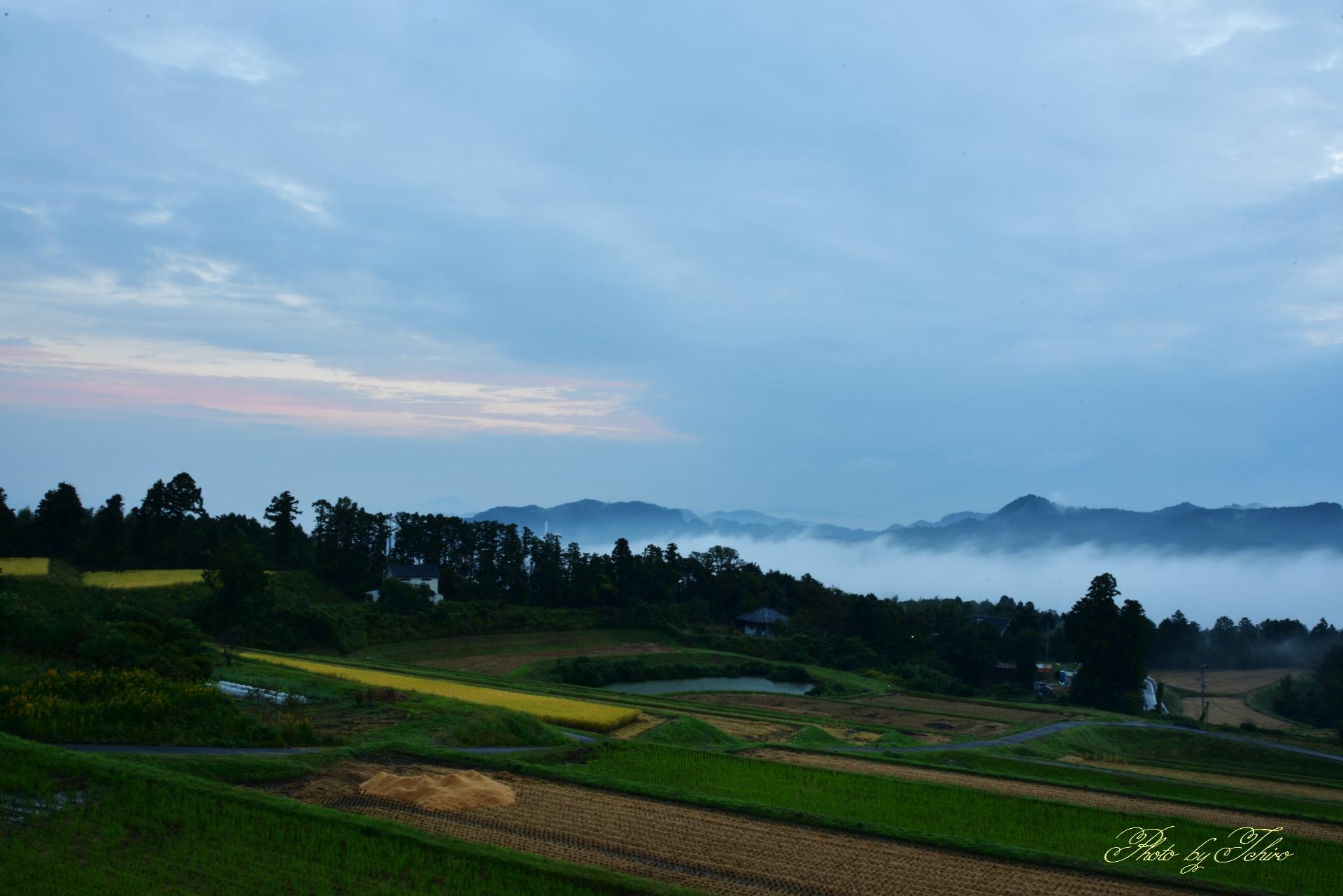 曇り空の朝