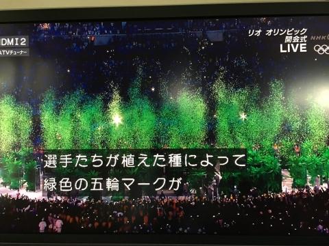2016-08-06_10-59-05.jpg