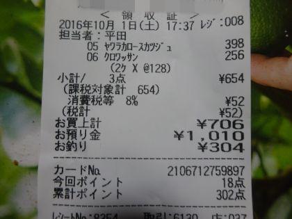 mini_DSC01160.jpg