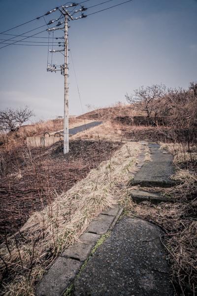 2016aomori_35.jpg