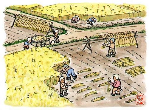 昔の稲刈り