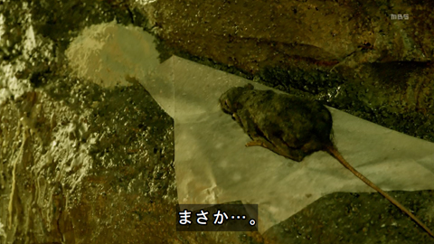 higanjima-loveisover03-19100438.jpg