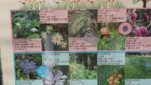 9/4 駒沢公園散策4