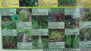 9/4 駒沢公園散策5