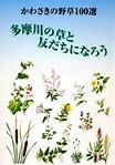 多摩川の野草100選