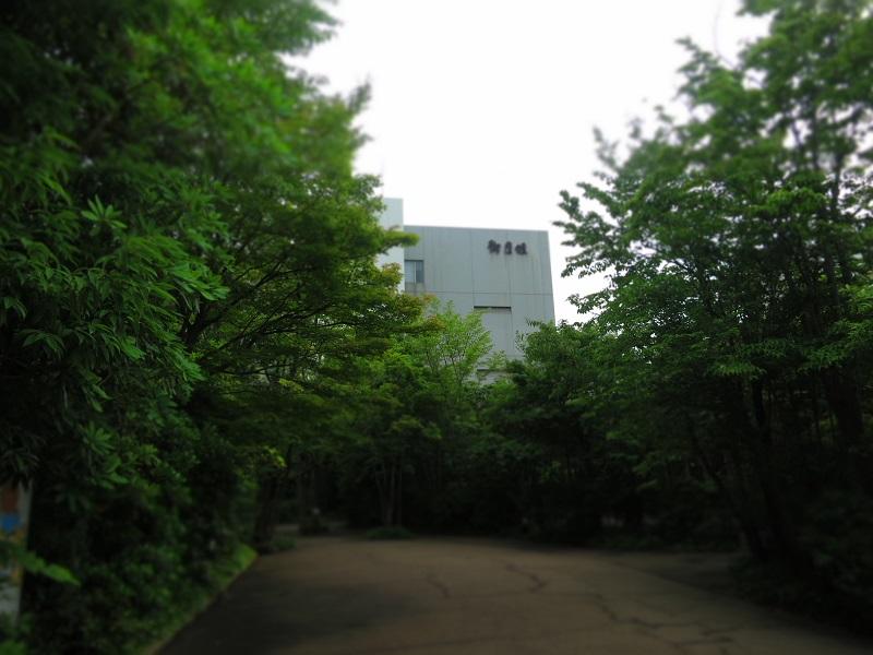 azu1.jpg