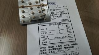 DSC_1559.jpg