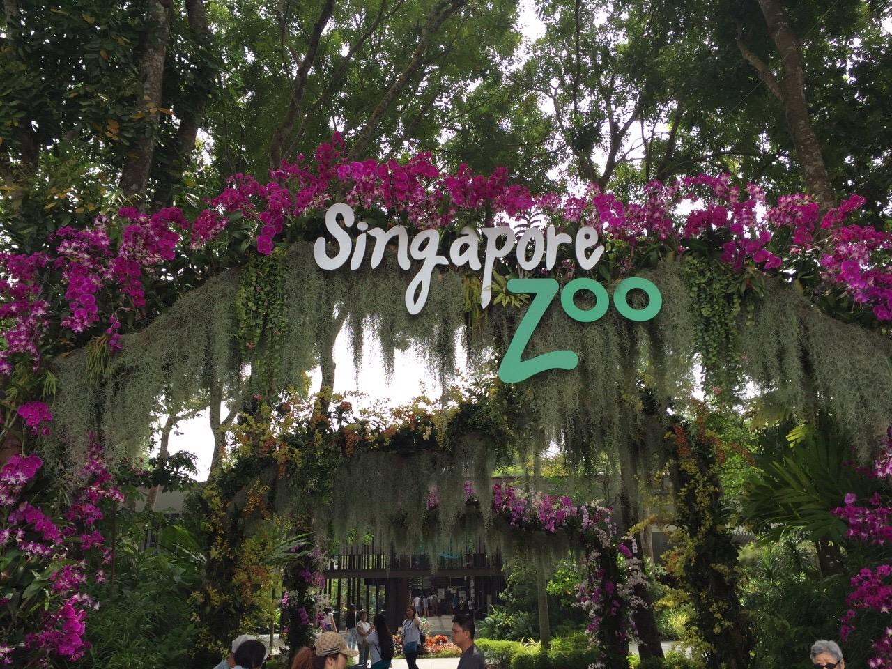 シンガポールzoo6