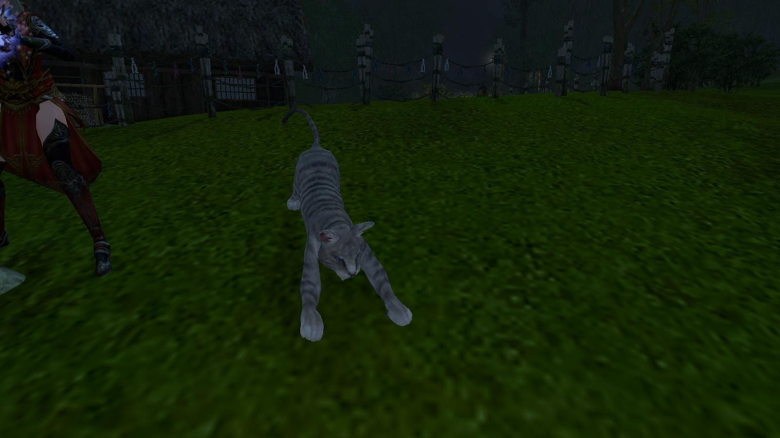 いかつい猫
