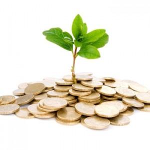 資本とは、植物を育てるに似て