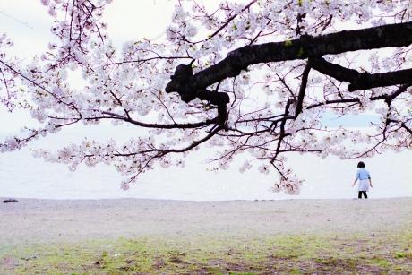 nagahama_houpark_12.jpg