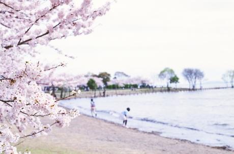nagahama_houpark_13.jpg