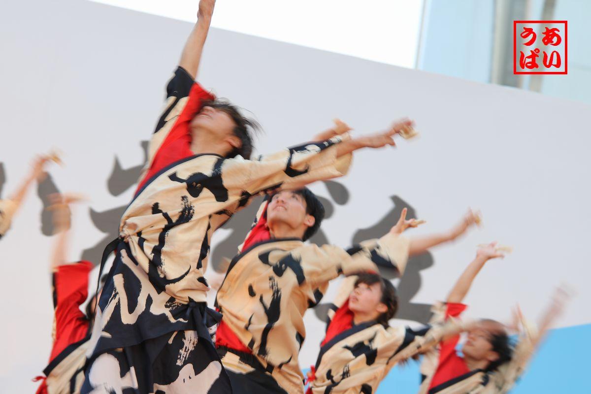 IMG_azuki2016_g.jpg