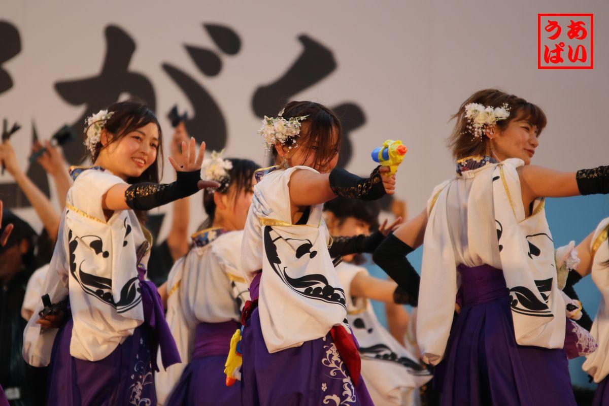 IMG_hyaku2016_e.jpg