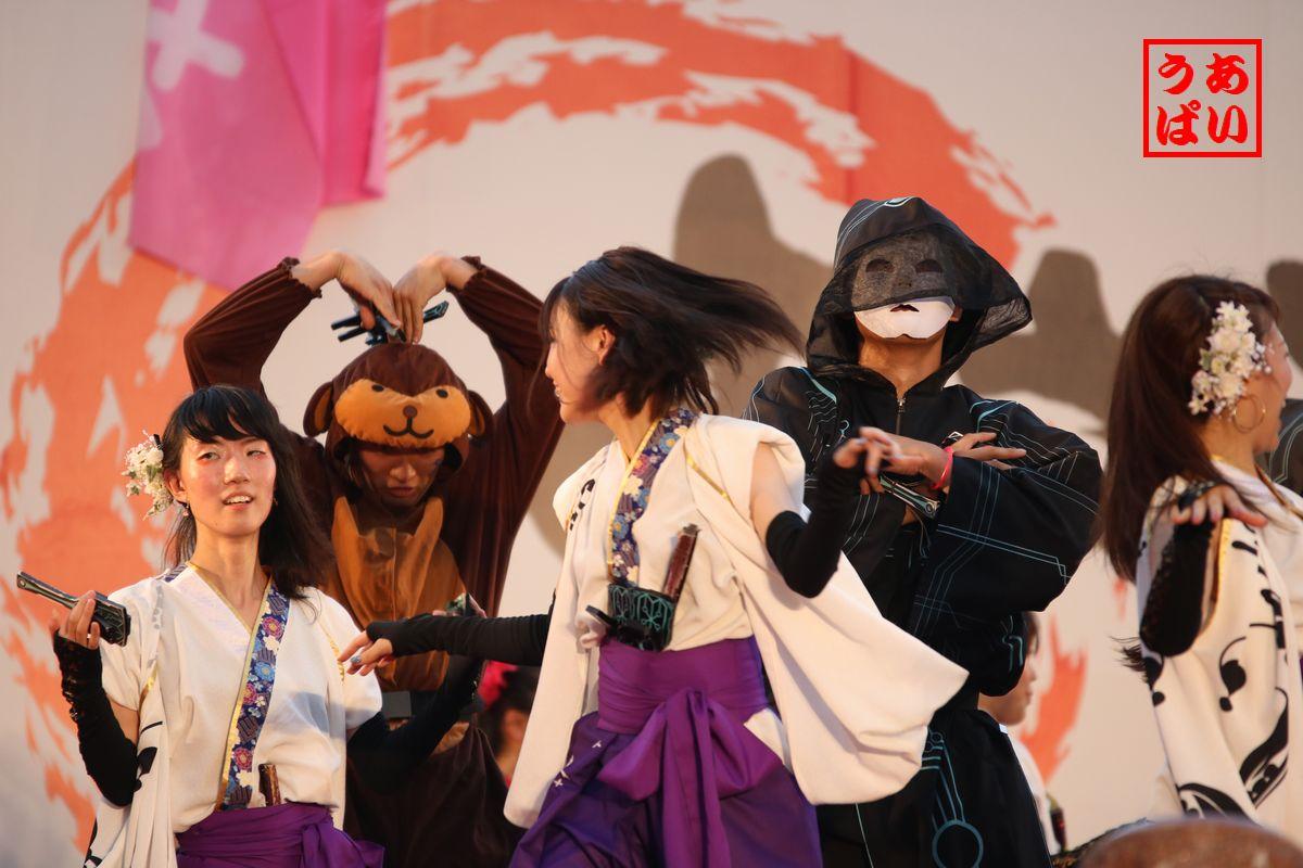 IMG_hyaku2016_g.jpg