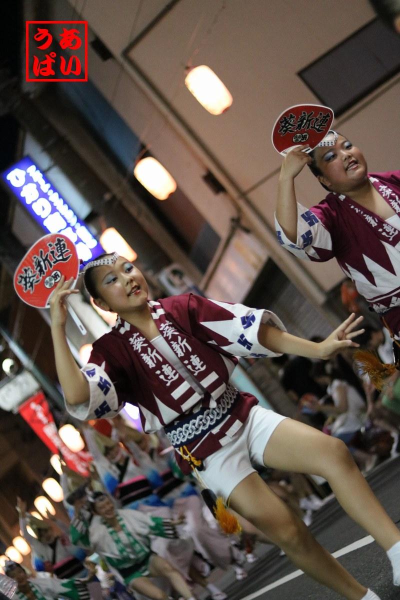 IMG_kitamachi2016aoi_i.jpg
