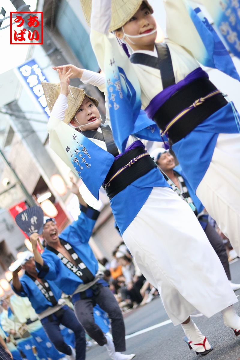 IMG_shinsui2016kita_c.jpg
