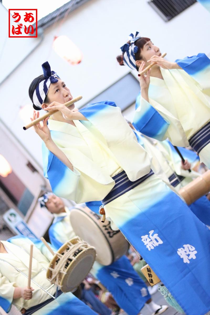 IMG_shinsui2016kita_h.jpg