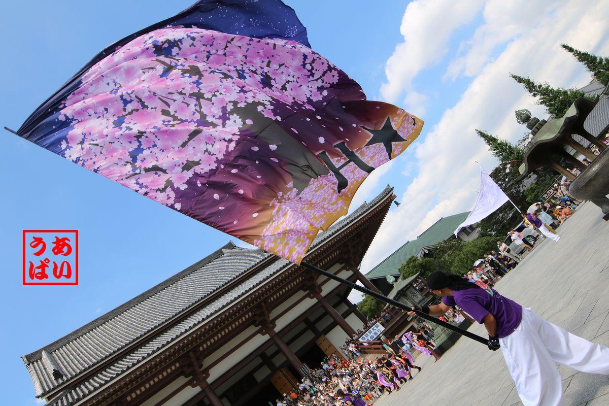 nishiarai2016_05b.jpg