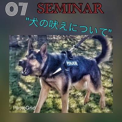 犬の吠えセミナー