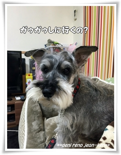 20160414_1c.jpg