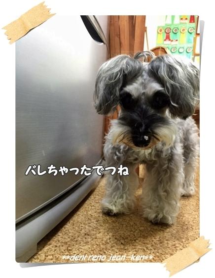 20160604_1c.jpg