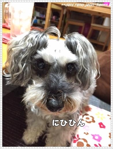 20160624_1a.jpg