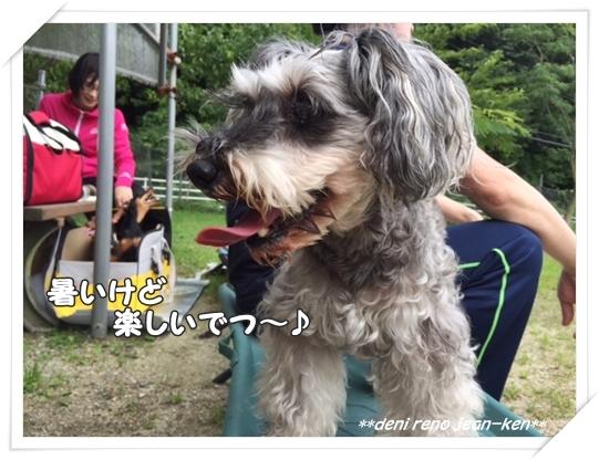 20160706_1a.jpg