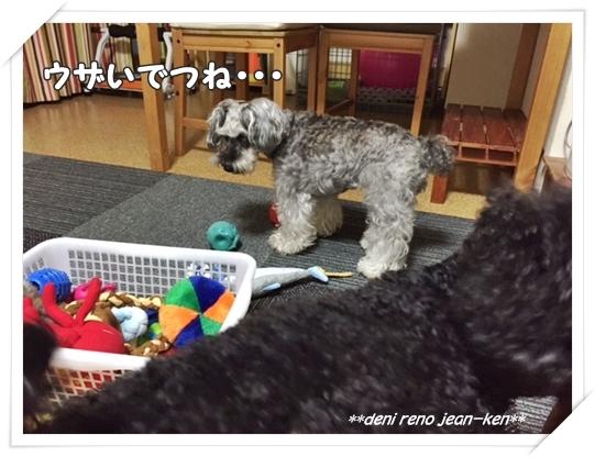 20160709_1a.jpg