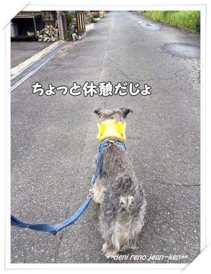 20160713_1c.jpg