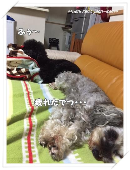 20160731_2d.jpg