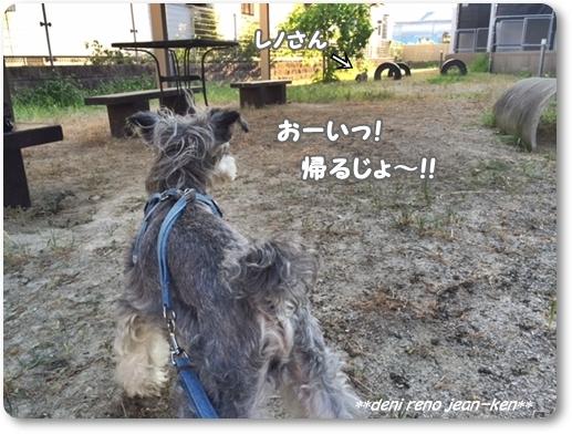 20160813_1d.jpg