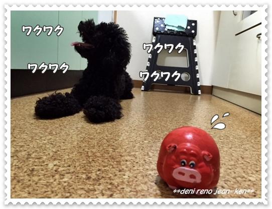 20160921_1c.jpg