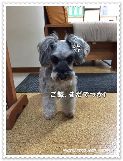 20160921_1d.jpg