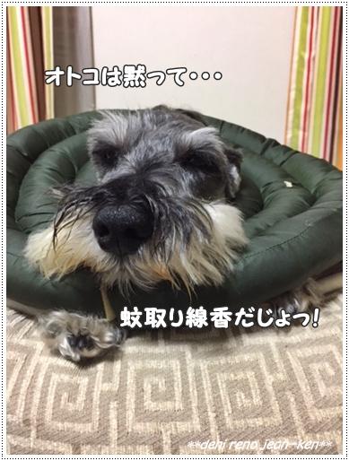 20161007_1a.jpg