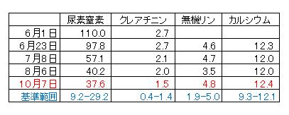 20161007_deni_1.jpg