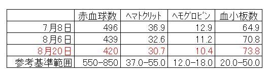 deni_kensa2.jpg