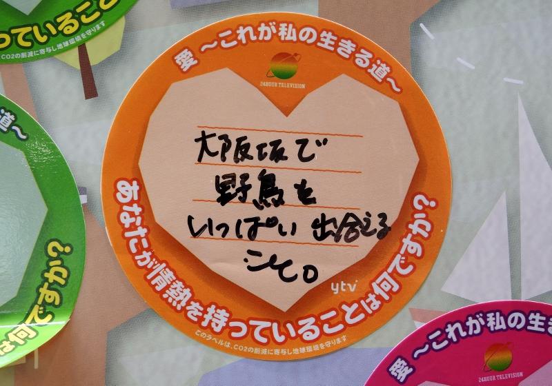 大阪城2016-08-28 015 (800x560)