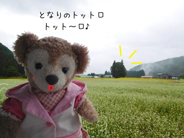 001DSCN3068.jpg