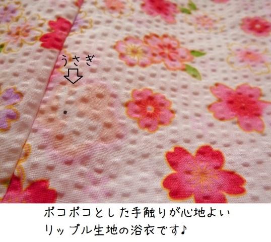 004P1380693.jpg
