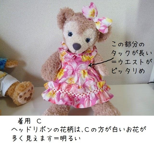 204-P1360951.jpg