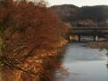 広瀬川から