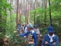 ヒノキ林のかん木を見ながら
