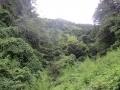 深谷の入口